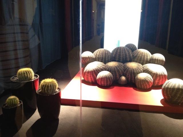 cactus cactus print,beanie bags, ottoman, modern pouf